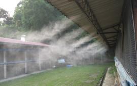 Hệ thống phun sương cho khu vườn